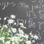 Tel Aviv, Israel: Das war wohl die Tageskarte ... konnten wir aber leider nicht lesen.