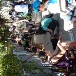 Tel Aviv, Israel: ... der Hundemarkt wäre was für einen gewissen Marc gewesen :-(