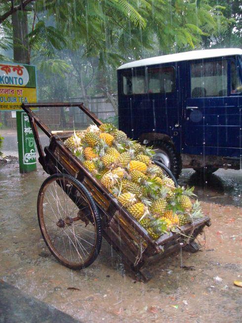 Reise nach Bangladesch