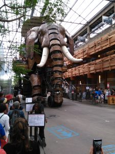 Der große Elefant - beim Durchmarsch